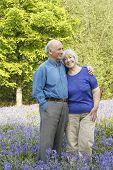 stock photo of old couple  - Senior couple in woodland full of beautiful springtime bluebells - JPG