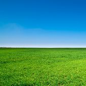 picture of farm landscape  - beautiful landscape - JPG