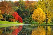 The Stunning Beauty Of Autumn