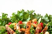 Green leaf salad with grilled chicken.