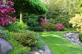 picture of manicured lawn  - Beautiful park garden in spring - JPG