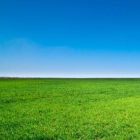 image of farm landscape  - beautiful landscape - JPG
