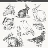 vector set - handwork - animals