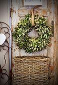 Seasonal Plant Decoration