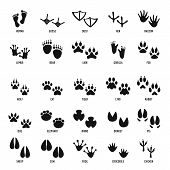 Animal Footprint Icons Set. Simple Illustration Of 25 Animal Footprint  Icons For Web poster
