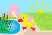 duckling, vector illustration, all characters are on separate layers.