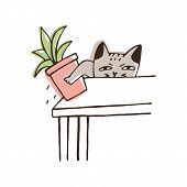 Nasty Cat Throwing Potted Plant Off Table. Amusing Naughty Kitty Dropping Houseplant Isolated On Whi poster