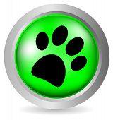 Paw button
