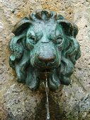 Lion Effigy Fountain
