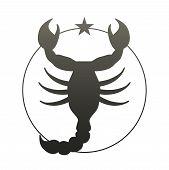 Symbolic Representation Of Zodiac Sign. Scorpio. Vector Illustration poster