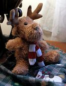 Toy Reindeer With Scarf
