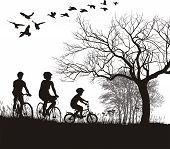 Family Cycling In The Countryside.
