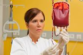 stock photo of infusion  - a nurse in hospital with blood products - JPG