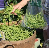 Buying Green Beans