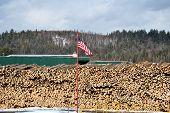 American Lumberyard