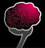 picture of temporal lobe  - Illustration of human brain in black background - JPG