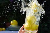 Lemons Splashing Into Water