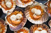 Baking Tray Of Scallops Cooked poster