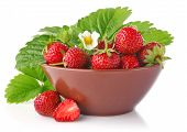 Ripe Strawberry In Tureen With Green Leaves