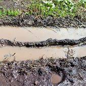 Turbid Puddle In Country Rut