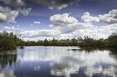 Lake At A Nature Reserve