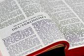 Bible Page - Deuteronomy
