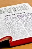 Bible Page - Joshua
