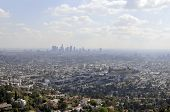 Los Angeles And Skyline