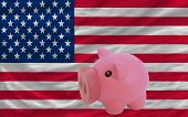 Piggy Rich Bank And  National Flag Of America