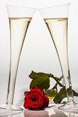 Champagner oder Sekt in ein Champagnerglas mit roter Rose. Foto-Icon für Feiertage, Hochzeit