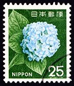 Postage Stamp Japan 1966 Hydrangea, Flowering Plant