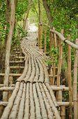 Постер, плакат: Бамбуковая дорожка в мангровых лесов в Petchabuti Таиланд