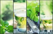 stock photo of mints  - Mint tea collage - JPG