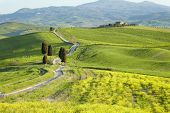 Countryside, San Quirico d�?�´Orcia, Tuscany, Italy