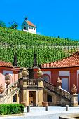 A view on a pictoresque vineyard from Troja Palace Prague