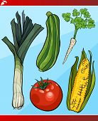 Vegetables Set Cartoon Illustration