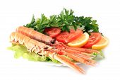 foto of norway lobster  - Plate of Norway lobster dinner in a restaurant - JPG