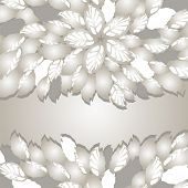 Silver flowers and leaves borders with space for text. This image is a vector illustration.