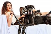 Beautiful young woman posing with her Great Dane dog. Isolated over white.