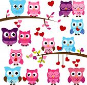 Vector Collection of Valentines Day or Love Themed Owls poster