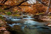 Beautiful Fall Foliage Surrounding the Silky Waterfalls on the Guadalupe River, Texas.