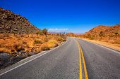 Joshua Tree boulevard Road in Yucca Valley desert California USA