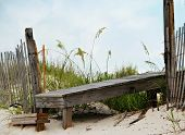 stock photo of sea oats  - A boardwalk to the beach surrounded by sea oats - JPG