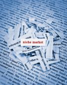 image of niche  - concept of finding niche market with typed texts - JPG