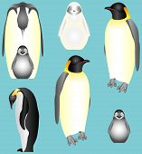 stock photo of emperor  - Emperor Penguins - JPG
