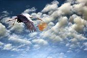 Stork Bringing  Basket