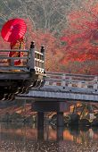 foto of geisha  - A geisha enjoys the last of the autumn foliage under a red umbrella - JPG