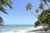 image of deserted island  - A deserted beach on the Coral Coast on the island of Viti Levu - JPG