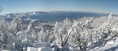 Panoramic View Of Lake Tahoe From The Mountain Top