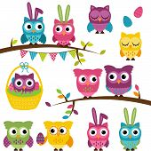stock photo of ash-tree  - Vector Collection of Easter and Spring Themed Owls - JPG